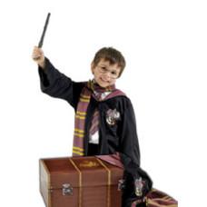 Harry Potter jelmezkellék és láda