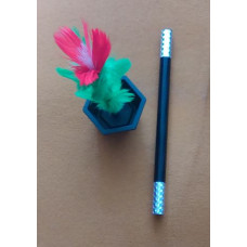 Bűvészbottal megjelenő virág